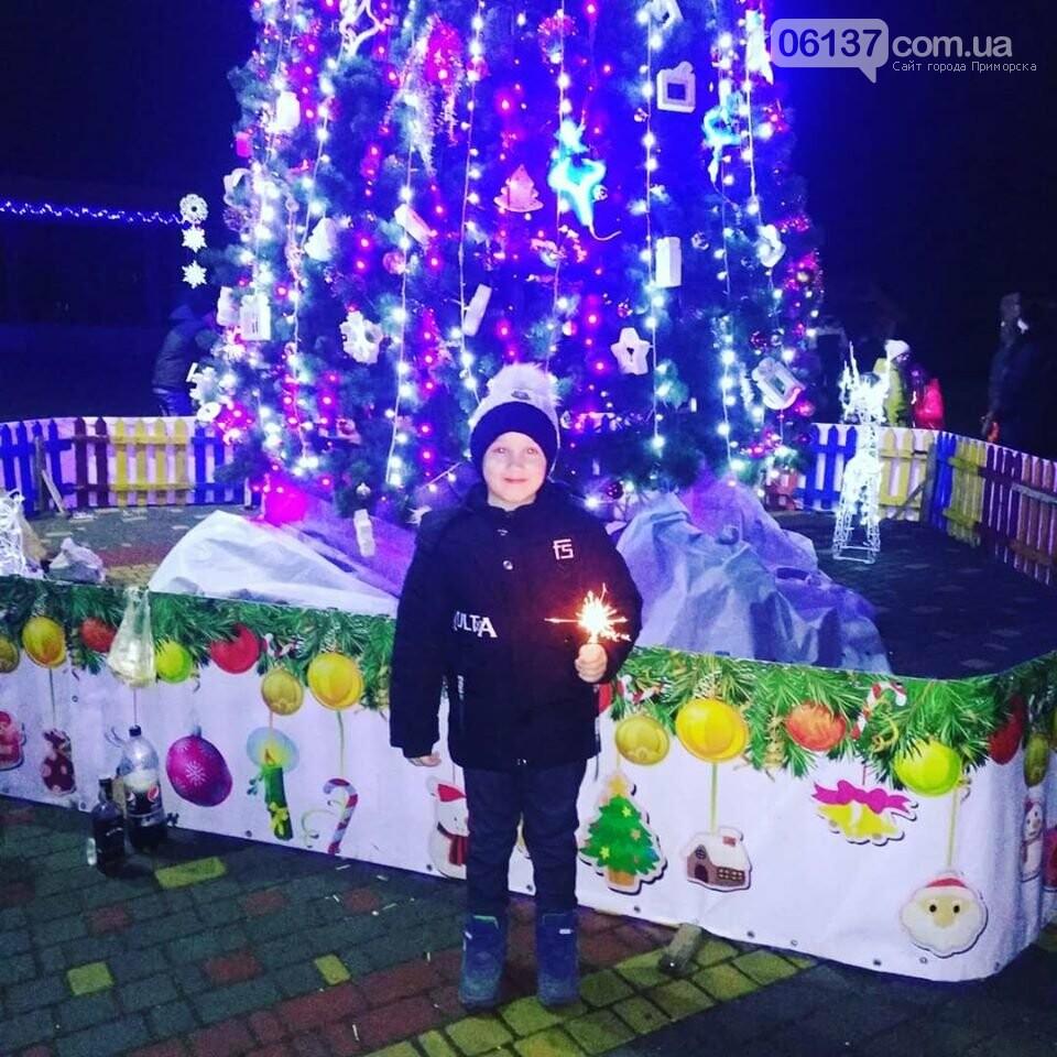 Организация новогоднего праздника в Приморске оставляла желать лучшего, фото-1