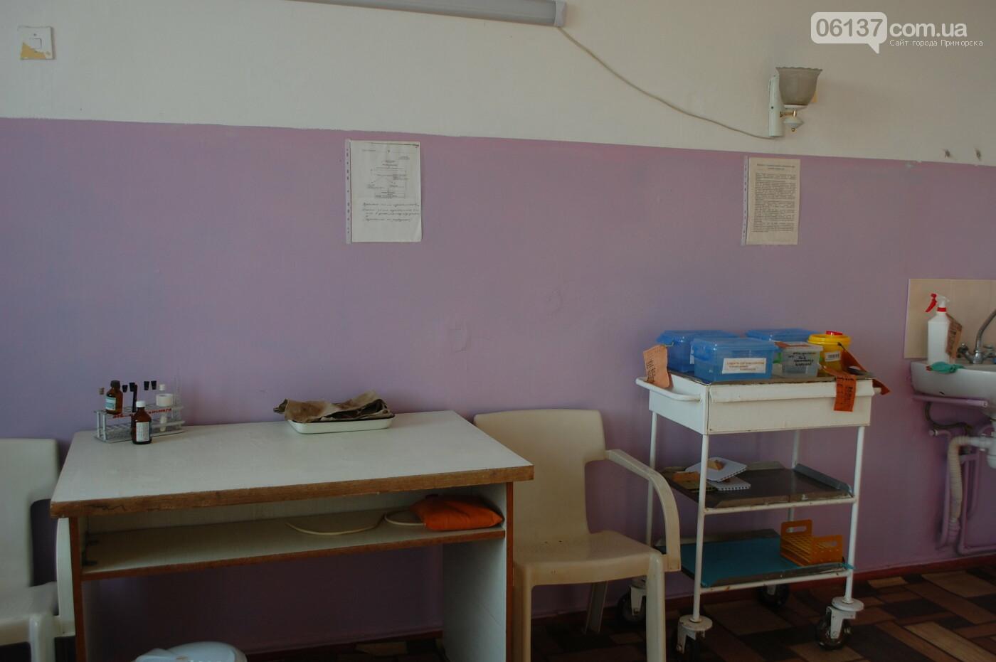За дитину, якій не надали медичну допомогу заступилися активісти Приморська, фото-10