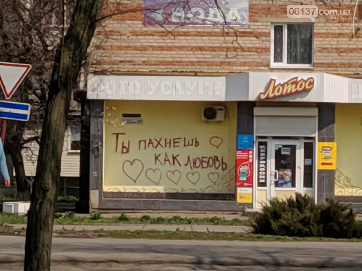 Год назад Приморск впервые узнал что значит жить в условиях карантина., фото-12