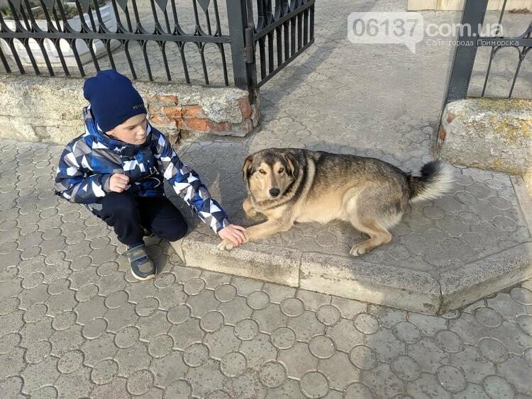 Вбивство Валери вже розслідує  Приморська поліція, фото-2