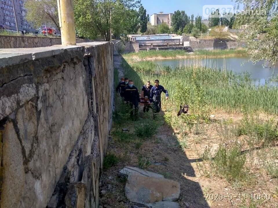 Житель Запорожской области попал в больницу после падения в фонтан. Фото, фото-2