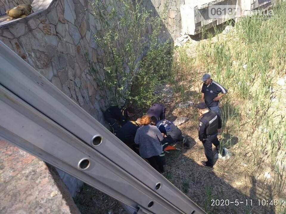 Житель Запорожской области попал в больницу после падения в фонтан. Фото, фото-1