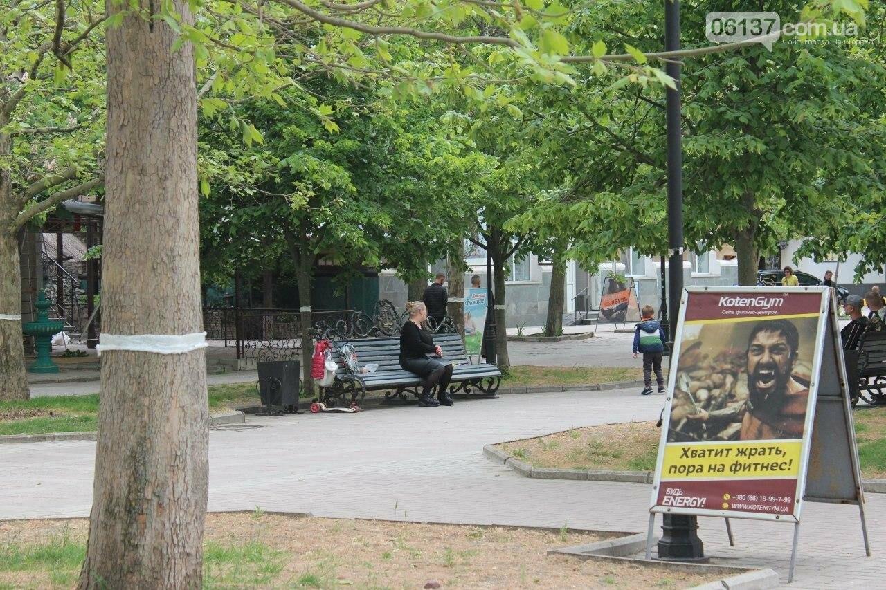 В Бердянске провели реставрацию скамей, фото-3