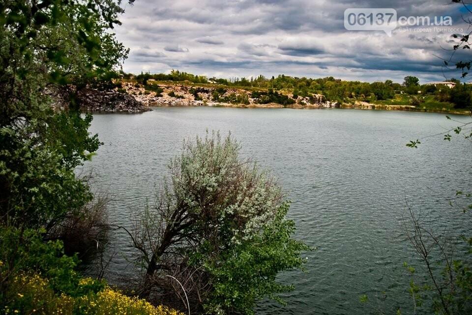 Неисхоженные места Запорожской области: фотохудожник показал очередной райский уголок. Фото  , фото-4