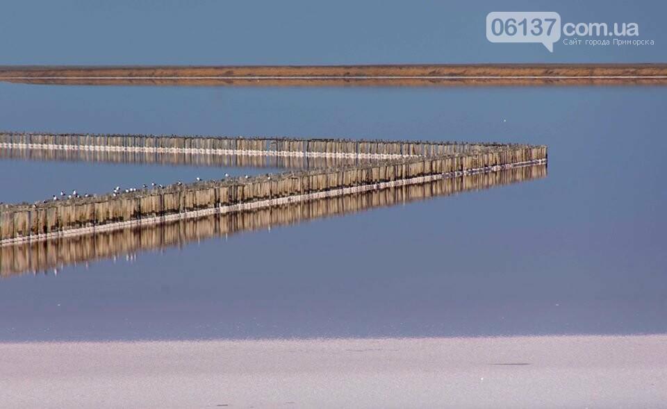 Запорожский фотограф сделал потрясающие снимки озера Сиваш и Арабатской стрелки. Фото  , фото-8