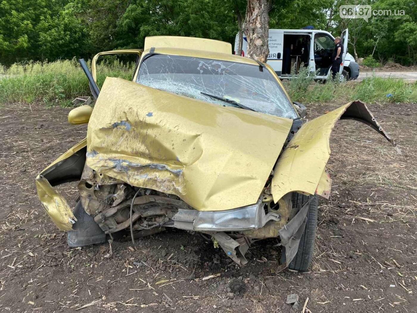 В Запорожской области водителю, убившему двоих людей, грозит тюремное заключение. Фото, фото-1