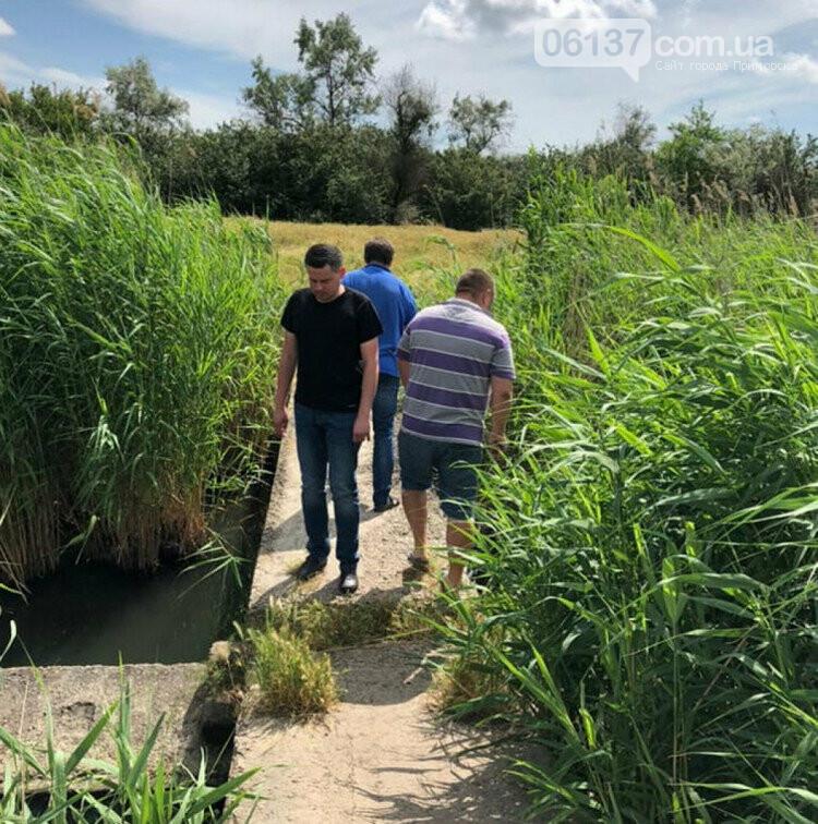 В запорожской реке из-за выброса химических веществ погибла рыба  , фото-2