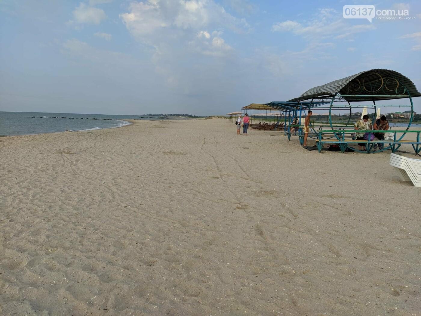 Один из запорожских курортов чист: нет медуз и водорослей. Фото  , фото-5