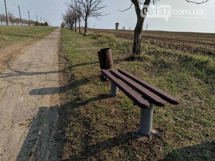 80-летний житель Запорожской области  убирает курорт. Фото.Видео, фото-2