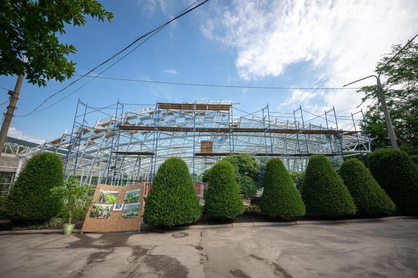 Оранжерея в запорожском ботсаду будет масштабной: что уже сделано. Фото, фото-1