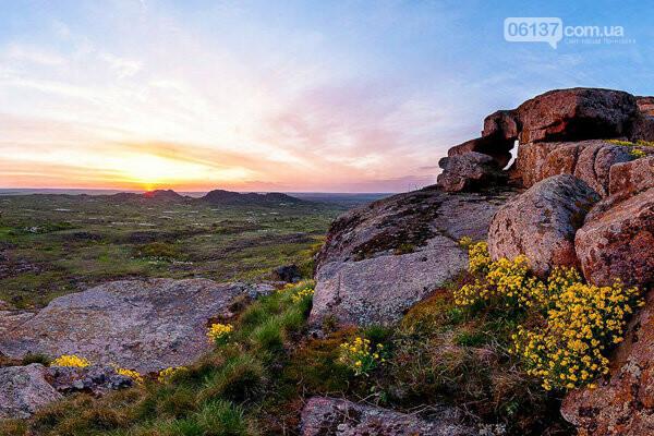 З 15 серпня на курорті в Запорізькій області починається сезон полювання, фото-1