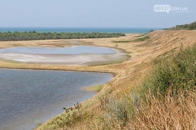 О целебных свойствах грязи Азовского побережья доказано ученым -химиком Евгением Бурксером, фото-2