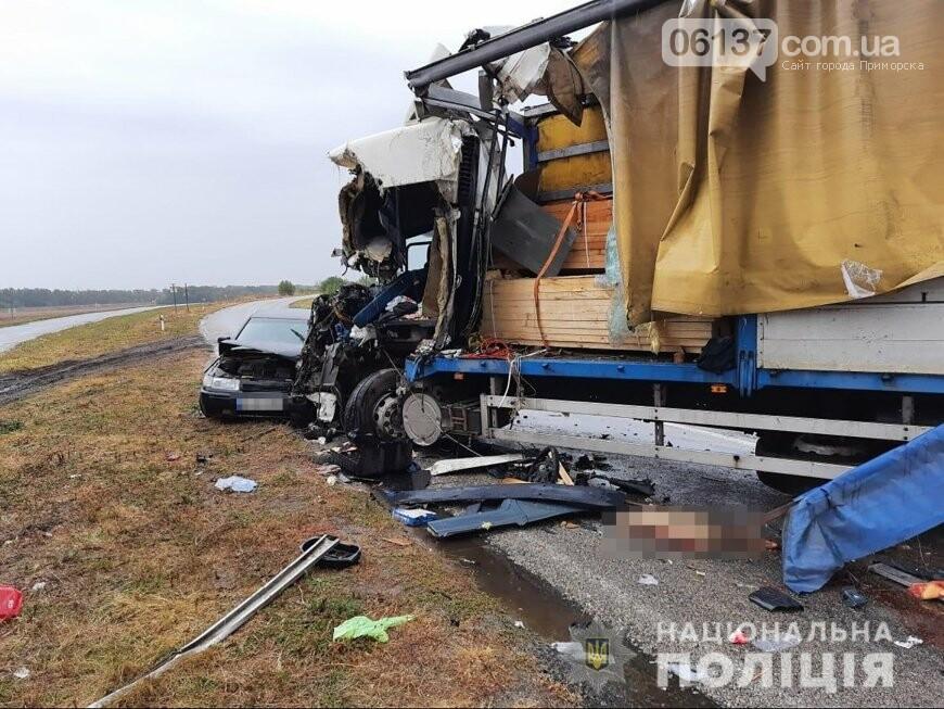 Масштабное тройное ДТП с фурой на трассе Запорожской области: водитель погиб. Фото  , фото-3