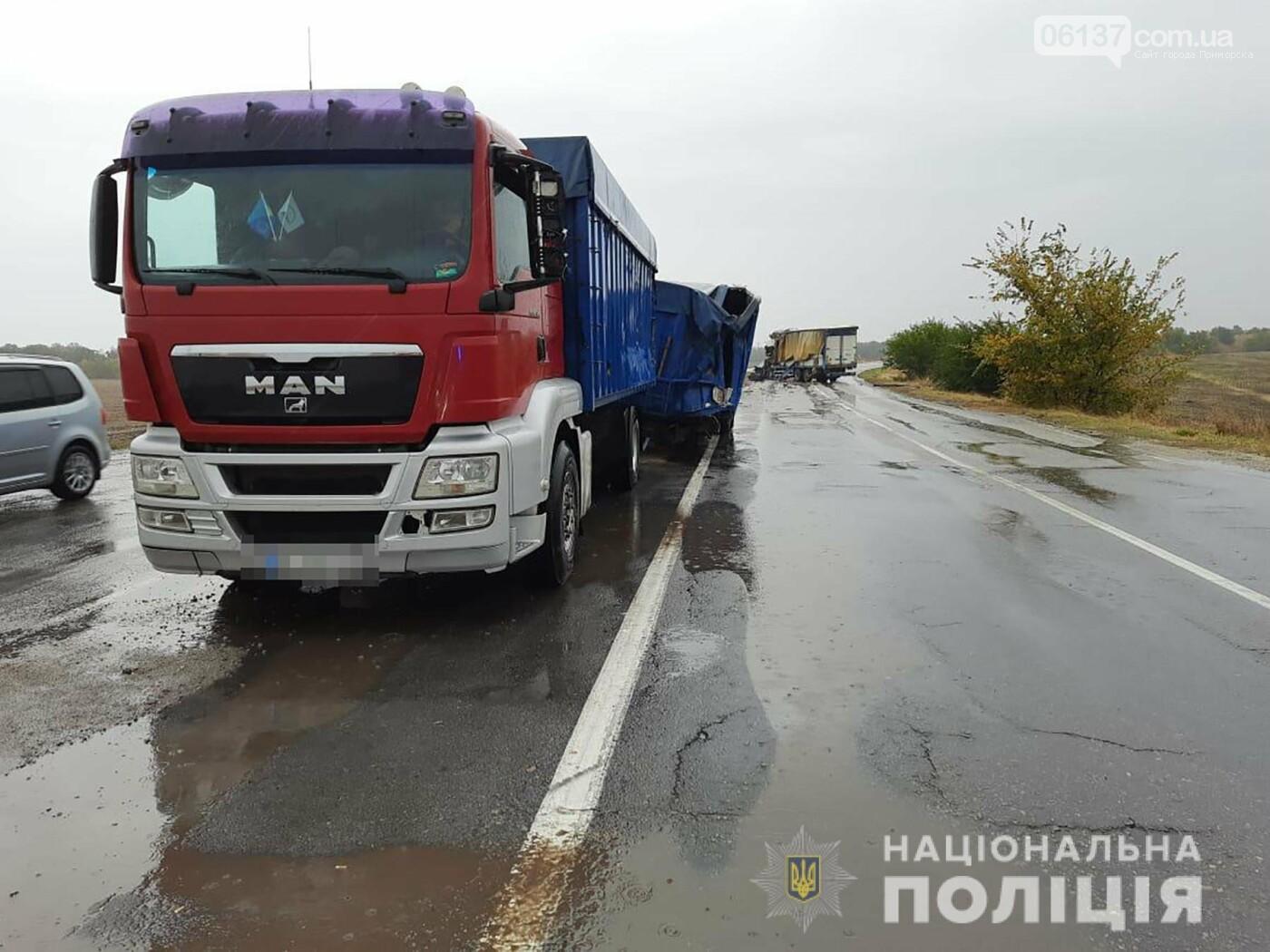 Масштабное тройное ДТП с фурой на трассе Запорожской области: водитель погиб. Фото  , фото-2