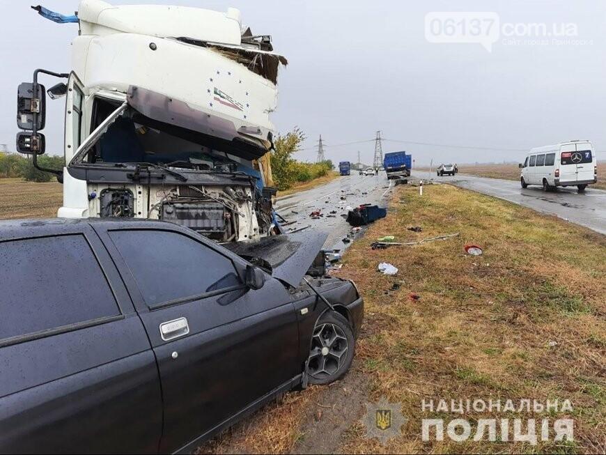 Масштабное тройное ДТП с фурой на трассе Запорожской области: водитель погиб. Фото  , фото-1