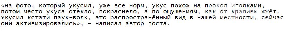Жительницу Запорожья укусил опасный паук. Фото, фото-2