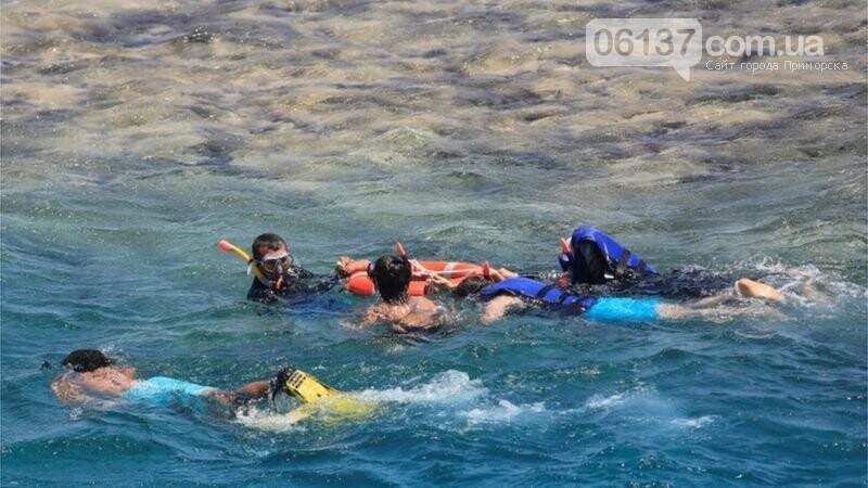 В Египте акула напала на украинцев: ребенок в реанимации, фото-1
