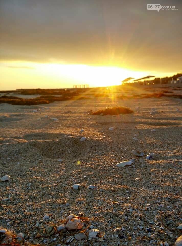 Красота ноябрьского моря в Запорожской области от заката до рассвета. Приморск. Обиточная коса , фото-4