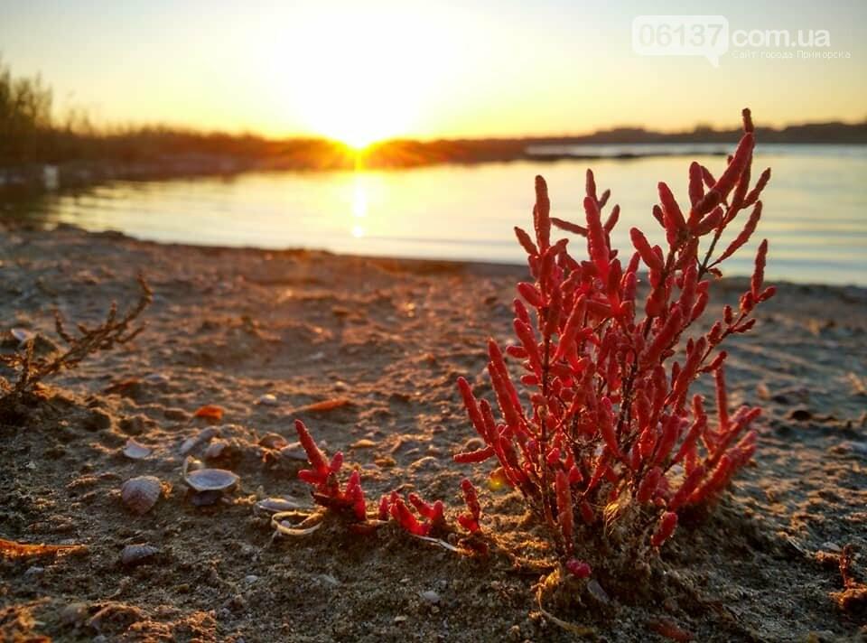 Красота ноябрьского моря в Запорожской области от заката до рассвета. Приморск. Обиточная коса , фото-6