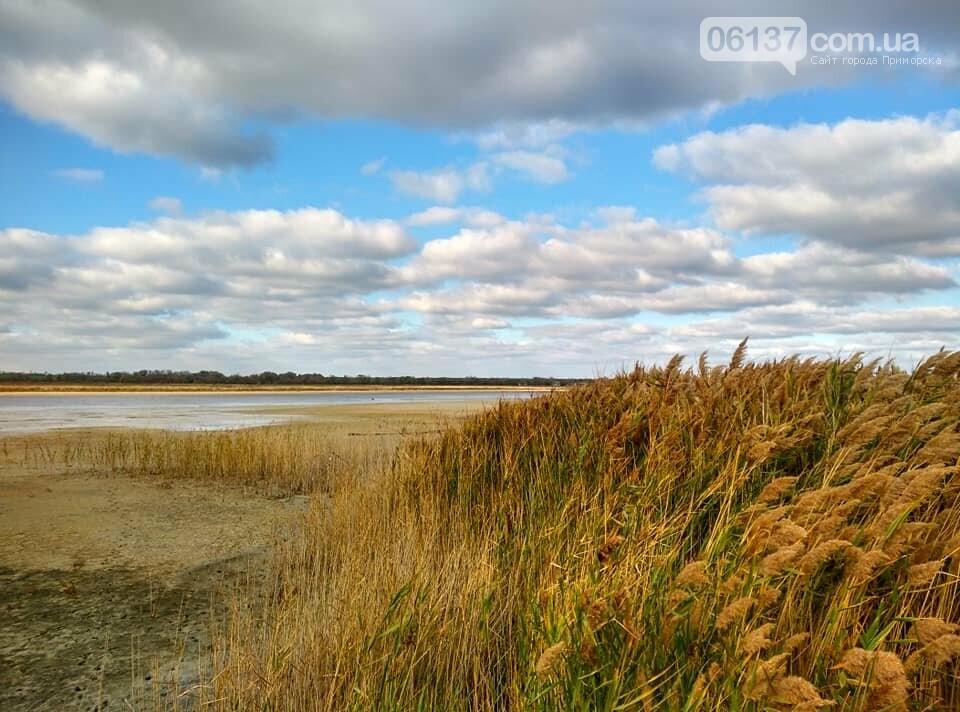 Красота ноябрьского моря в Запорожской области от заката до рассвета. Приморск. Обиточная коса , фото-20