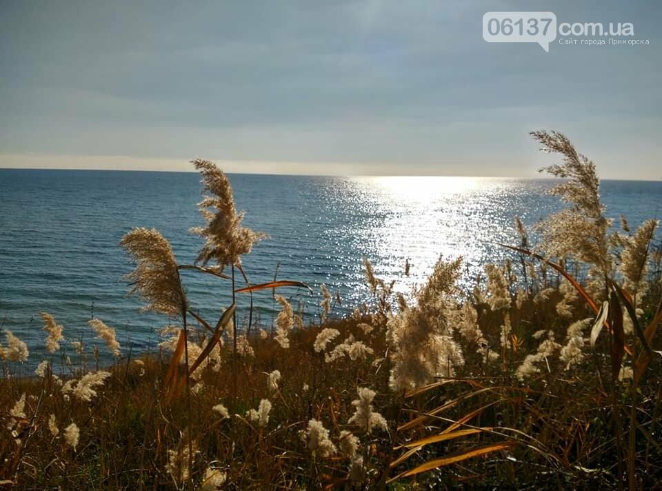 Красота ноябрьского моря в Запорожской области от заката до рассвета. Приморск. Обиточная коса , фото-29