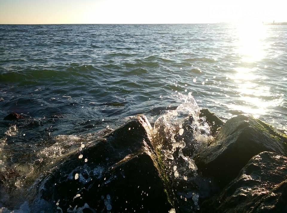 Красота ноябрьского моря в Запорожской области от заката до рассвета. Приморск. Обиточная коса , фото-32
