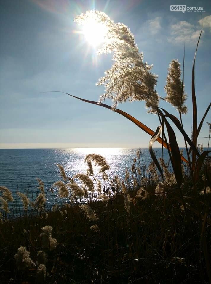 Красота ноябрьского моря в Запорожской области от заката до рассвета. Приморск. Обиточная коса , фото-34