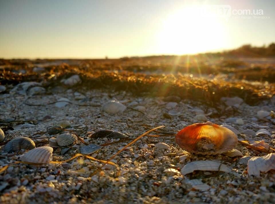 Красота ноябрьского моря в Запорожской области от заката до рассвета. Приморск. Обиточная коса , фото-35