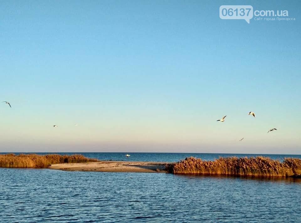 Красота ноябрьского моря в Запорожской области от заката до рассвета. Приморск. Обиточная коса , фото-36