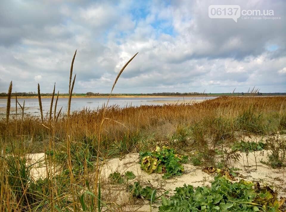 Красота ноябрьского моря в Запорожской области от заката до рассвета. Приморск. Обиточная коса , фото-38