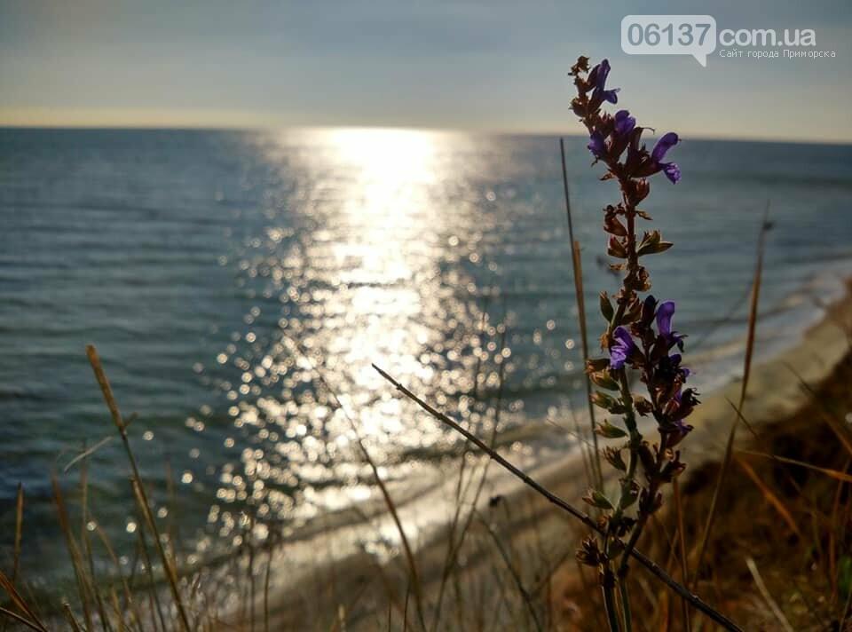 Красота ноябрьского моря в Запорожской области от заката до рассвета. Приморск. Обиточная коса , фото-41