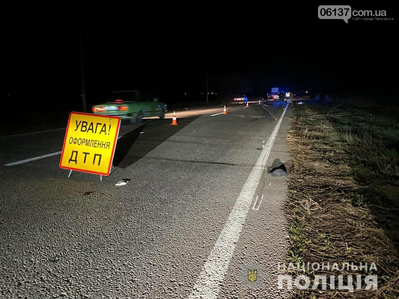 На запорожской трассе пьяный водитель «Audi» сбил насмерть велосипедиста. Фото, фото-1