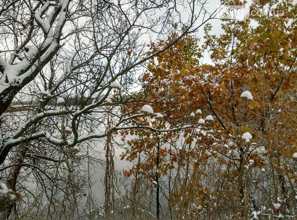 Первый снег на Хортице - вдохновение. Фото, фото-4