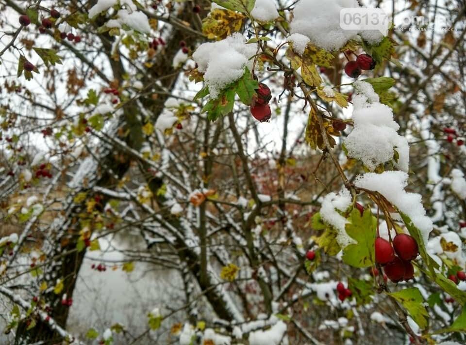 Первый снег на Хортице - вдохновение. Фото, фото-5