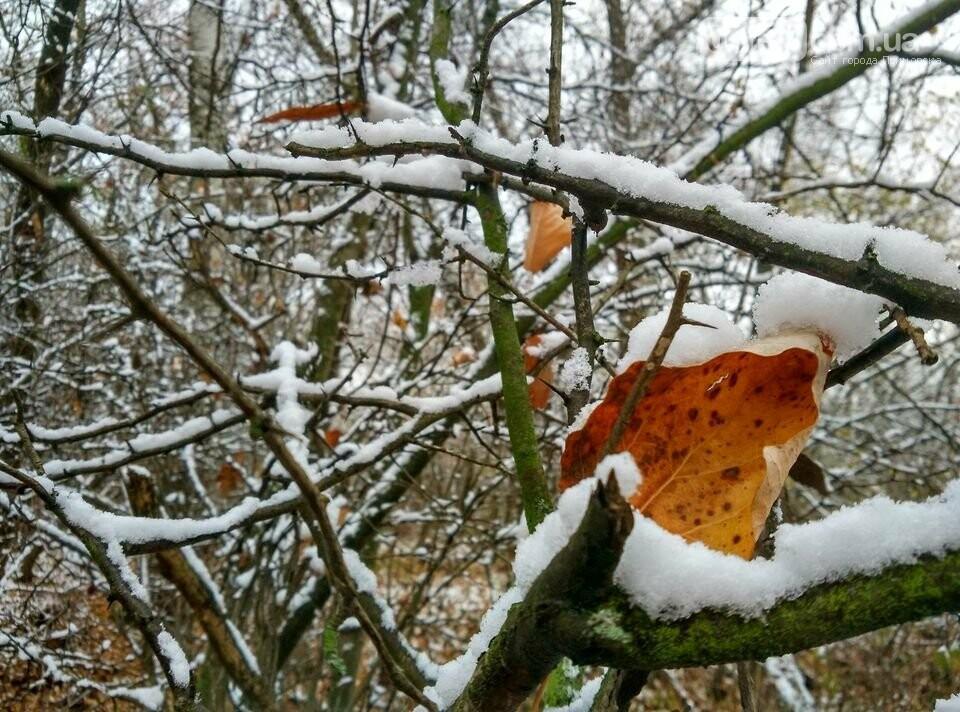 Первый снег на Хортице - вдохновение. Фото, фото-10