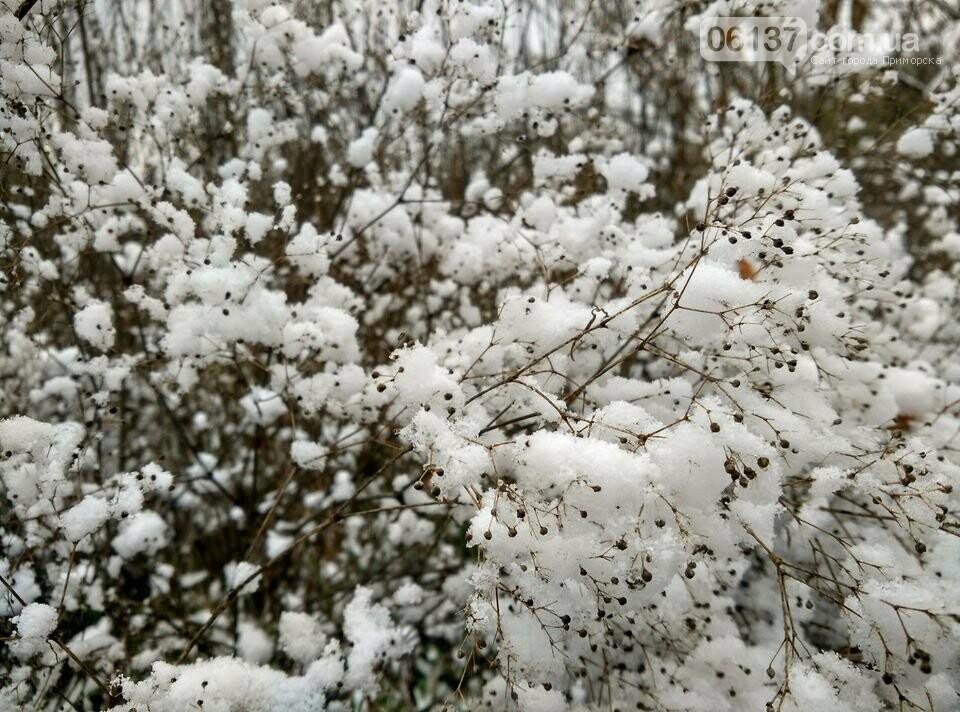 Первый снег на Хортице - вдохновение. Фото, фото-7