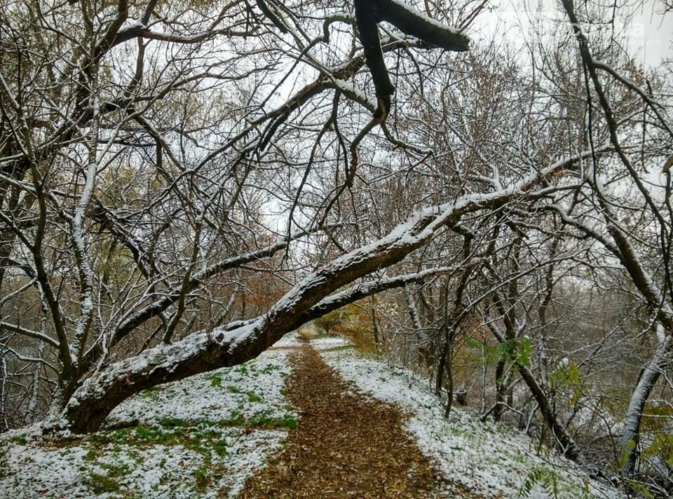 Первый снег на Хортице - вдохновение. Фото, фото-15