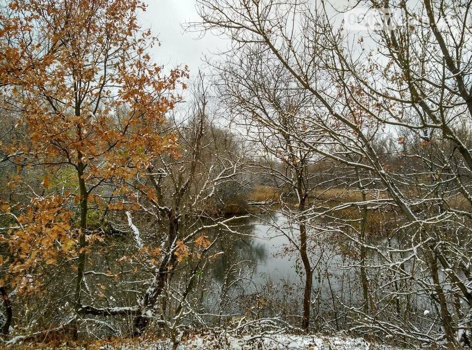 Первый снег на Хортице - вдохновение. Фото, фото-17