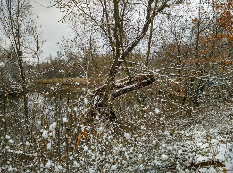 Первый снег на Хортице - вдохновение. Фото, фото-18
