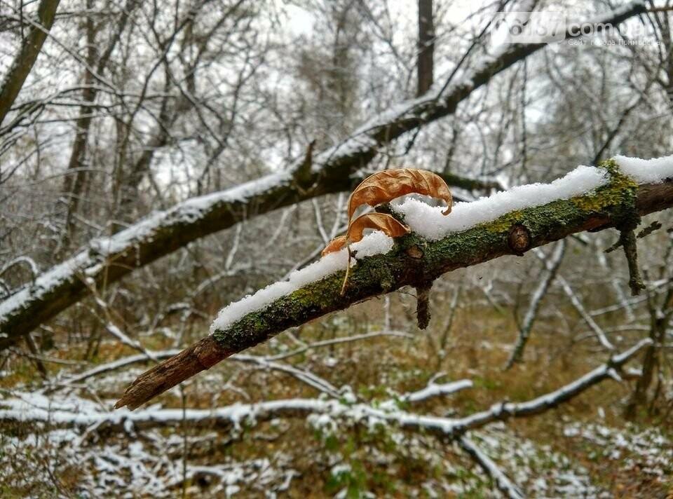 Первый снег на Хортице - вдохновение. Фото, фото-24