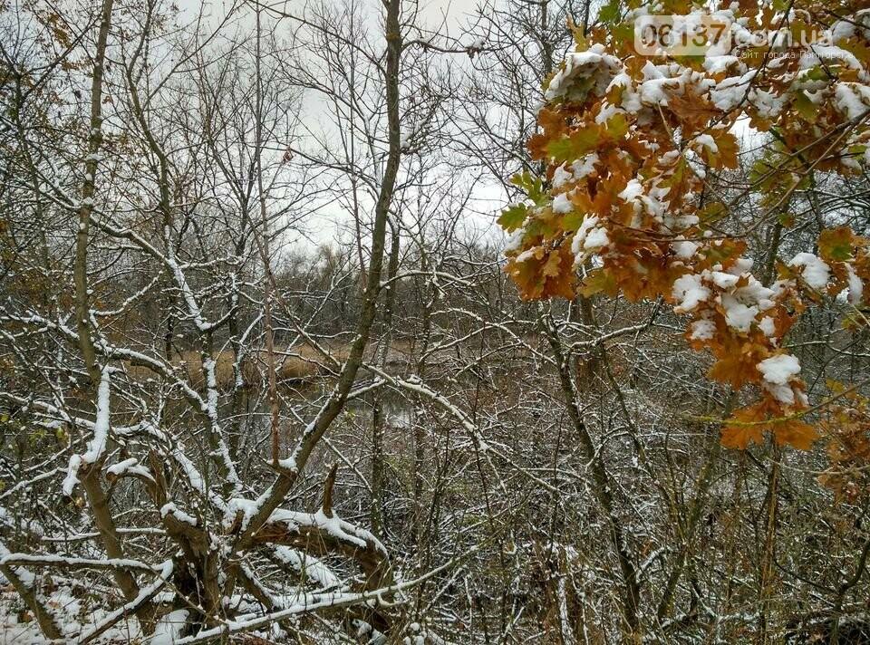 Первый снег на Хортице - вдохновение. Фото, фото-23