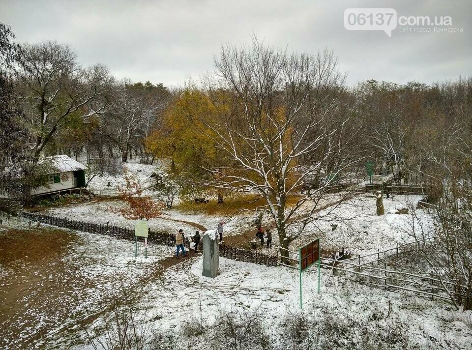 Первый снег на Хортице - вдохновение. Фото, фото-26