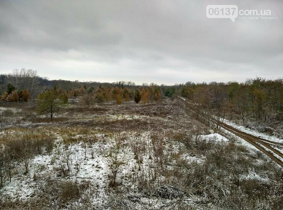 Первый снег на Хортице - вдохновение. Фото, фото-27