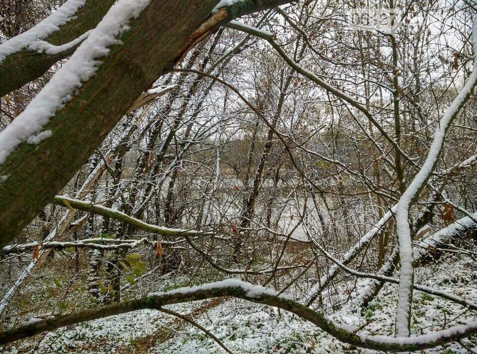 Первый снег на Хортице - вдохновение. Фото, фото-29