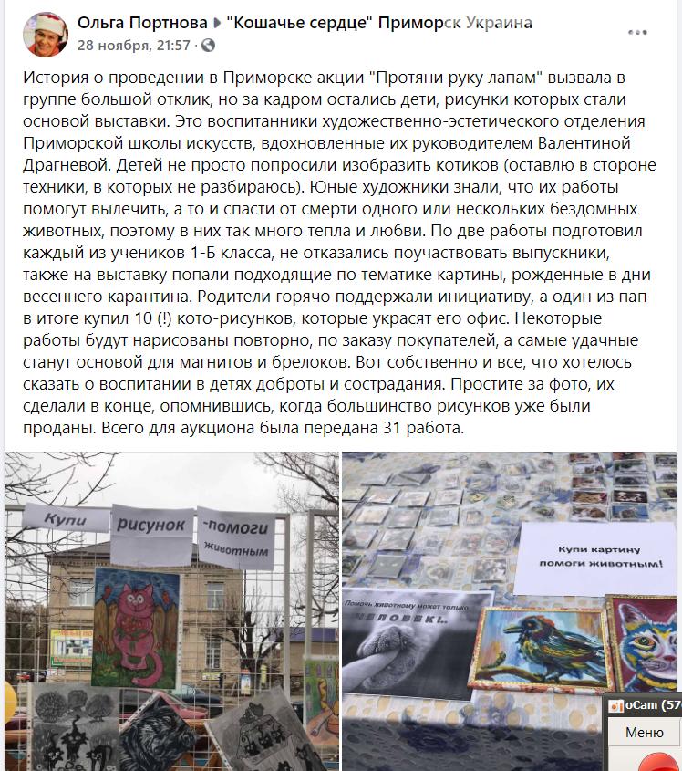 """Приморские волонтеры успешно провели акцию """"Протяни руку лапам"""" , фото-2"""
