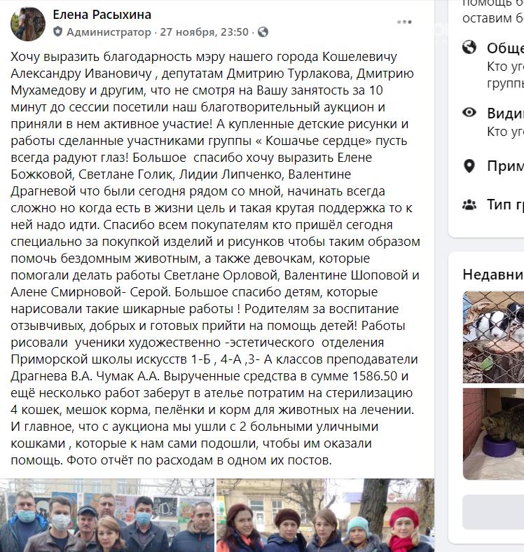 """Приморские волонтеры успешно провели акцию """"Протяни руку лапам"""" , фото-1"""