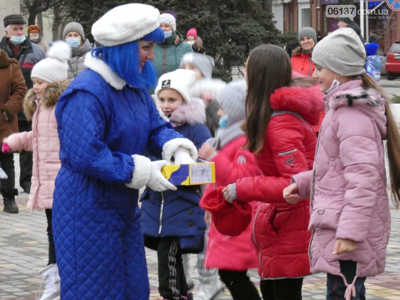 В Приморську відбулось відкриття центральної ялинки міста, фото-1
