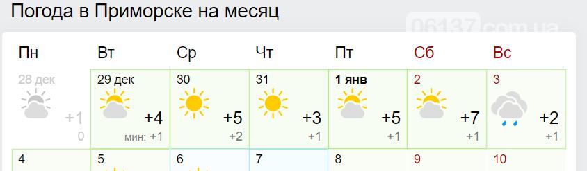 """В Приморске погода в Новогоднюю ночь будет """"мягкой"""", фото-1"""