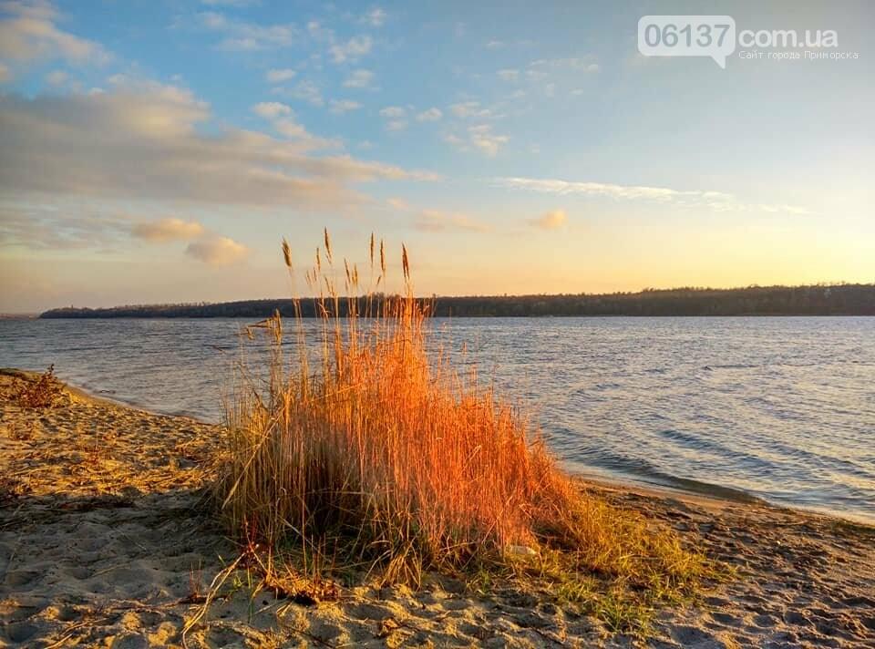 Иней, лед и солнце: живописные выходные в Запорожье. Фото , фото-9