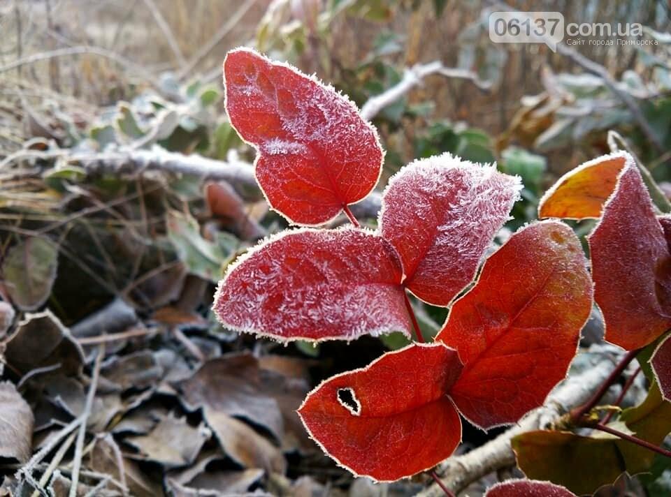 Иней, лед и солнце: живописные выходные в Запорожье. Фото , фото-13